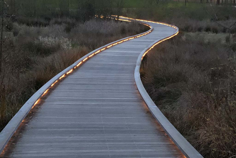 Curved Steel Boardwalk at Evelyn Schiffler Memorial Park
