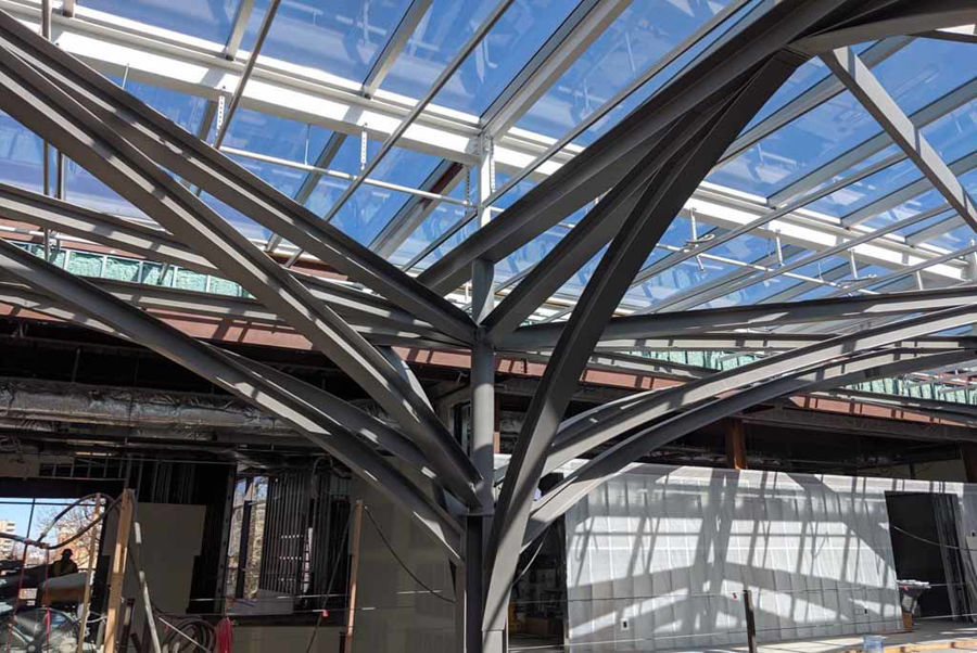 Curved Steel for the Freyer-Newman Center at Denvers' Botanical Gardens
