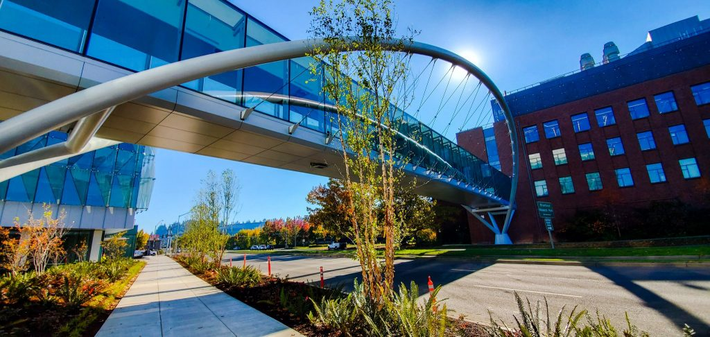 Curved Steel Pedestrian Bridge at the Phil and Penny Knight Campus for Accelerating Scientific Impact